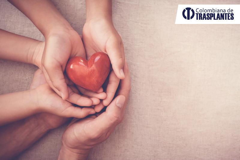 Mitos sobre la donación de órganos